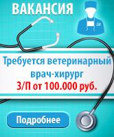 Вакансия ветеринарный врач-хирург. З/П от 100.000 руб.