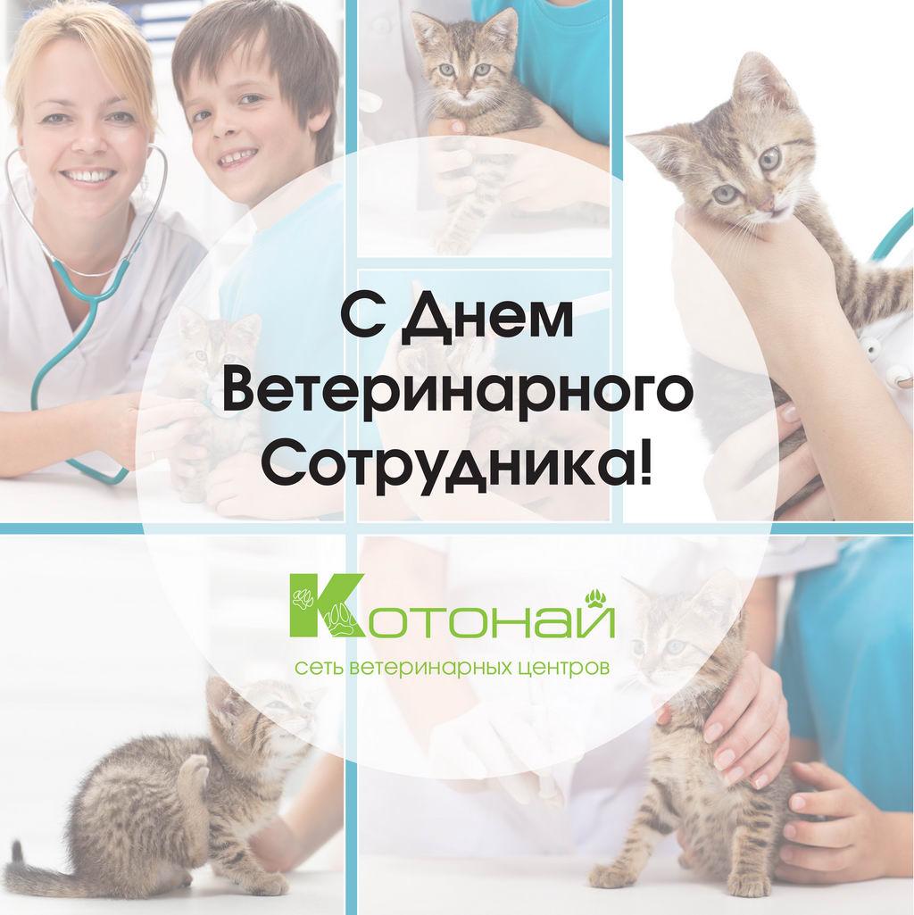 Поздравление с Днем ветеринара 56